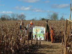 Pumpkin Farms Wisconsin by Wisconsin Germantown Wisconsin Jim U0027s Pumpkin Farm More Pumpkin