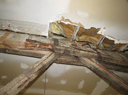 100 Bowstring Roof Truss Failure Compressive Failure Of Web Members At