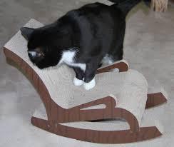 Pin On 3 FAT CATS AT PLAY