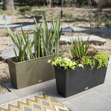 Horse Water Trough Bathtub by Horse Trough Planter Creating A Raised Herb Garden From Water