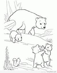 Wild Animal Coloring Page Free Printable Playful Bear Cubs Pages Featuring Hundreds Of Animals Sheets
