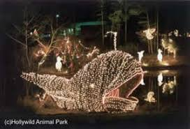 greenville celebrate the holidays at hollywild with the annual
