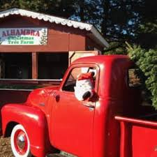 Santa Cruz Ca Christmas Tree Farms by Alhambra Christmas Tree Farm Christmas Trees 2647 Reliez