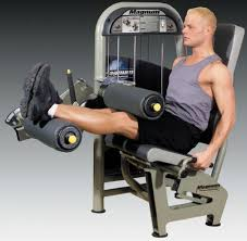 Roman Chair Leg Raises Jessie by Best 25 Leg Curl Ideas On Pinterest Leg Curl Machine Hamstring