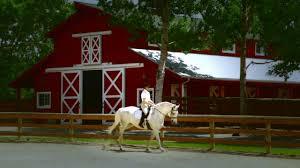 100 Stock Farm Montana Club Hamilton
