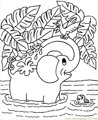 Coloring Pages Baby Elephant Mammals
