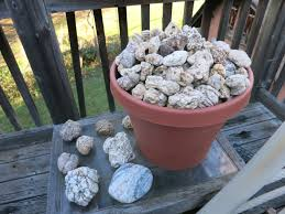 Dugway Geode Beds by Geode Hunting In My Yard Youtube