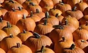 Pumpkin Festival Ohio by Huntsburg Pumpkin Festival U2013 Home Of Ohio U0027s Largest Pumpkin