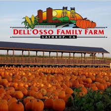 Pumpkin Patch Near Santa Clarita Ca by Pumpkin Maze At Dell U0027osso Family Farm Events Visit Stockton
