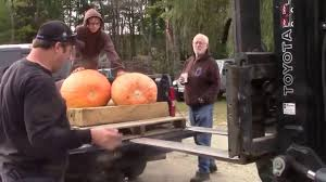 Damariscotta Pumpkin Festival by Damariscotta Pumpkinfest 2017 Youtube