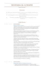 Internal Auditor Resume Example