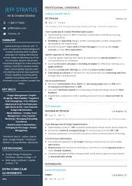 Miscellaneous Resume Examples And Samples Hairstyles Free Creative Resume Templates Eaging 20 Creative Resume Examples For Your Inspiration Skillroadscom Ai 50 You Wont Believe Are Microsoft Word Samples 14 New Thoughts About Realty Executives Mi Invoice And Executive Chef 650838 Examples Stunning Of Cvresume Ultralinx Communication Skills Valid Customer Manager Cv Pdf 11 Retail Management Director Velvet Jobs Of Design 70 Welldesigned For Your 15 That Will Land The Job