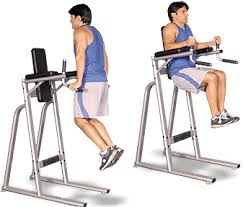 Abs Roman Chair Knee Raises by Core Exercise Stations