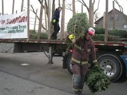 Fortunoff Christmas Trees Staten Island by Christmas Trees Staten Island Photo Album Halloween Ideas