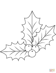 Christmas Holly Berries Coloring Page