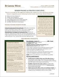 Executive Resume Samples 2016 Resumes Project