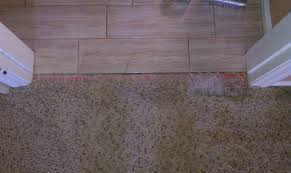 Types Of Transition Strips For Laminate Flooring by The Useful Of Carpet Tile Transition Ideas U2014 Tedx Decors