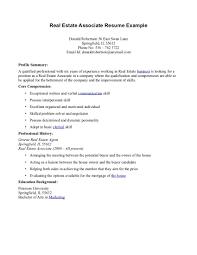 Real Estate Sales Assistant Resume Sample Best Format