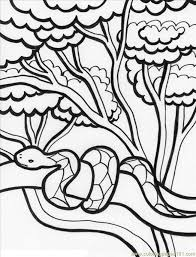 Rainforest Animals For Kids Printable Animal Coloring