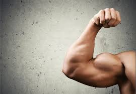 Pumpkin Seeds Testosterone by The Role Of Testosterone For Women And How To Get More