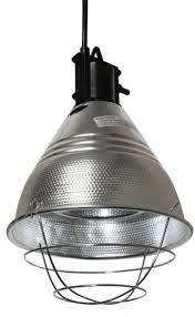 Tractor Supply Heat Lamp by Lamp Charming Heat Lamp Design Food Heat Lamp Hatco Heat Lamp