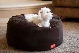 Image Of Bean Bag Dog Beds Bolster