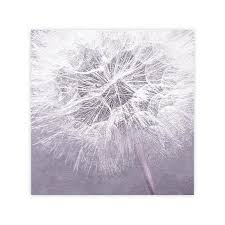 Abstract Purple Lavender Framed Dandelion Wall Art Print Decor Bedroom By