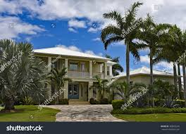100 Beach House Landscaping Large New Florida Palm Stock Photo Edit Now