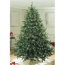 Black Pre Lit Pop Up Christmas Tree by 6 U0027 7 U0027 High Pre Lit Christmas Trees You U0027ll Love Wayfair