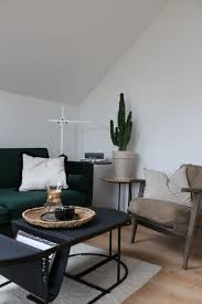 kaktus im wohnzimmer pflanzen wolfsmilch kaktus