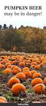 Fowler Pumpkin Patch Hours by 84 Best Beer Images On Pinterest Cocktail Recipes Cocktails And