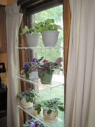 indoor window shelves for plants Google Search