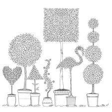 Secret Garden By Johanna Basford Zen Coloring Pages