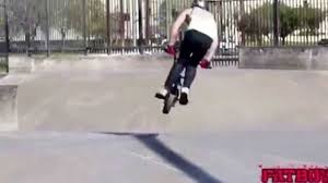FatBoy Mini BMXMini BMX Bikes Bmx Mr Bike Shop