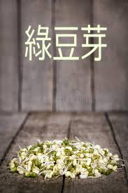 Download Mung Bean Sprouts Stock Image Of Mungo Gram Green