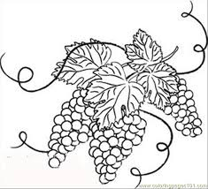 And White Grapes With Leaves Coloring Page