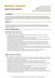 Lead Business Analyst II Resume Sample