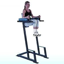 Roman Chair Leg Raises Jessie by Roman Chair Leg Raise At Home 53 Images Roman Chair Leg Raise