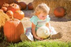 Great Pumpkin Patch Frederick Md by Maryland Fall Festivals Pumpkin Patches Apple Orchards U0026 More