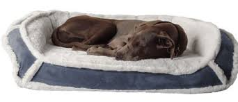 Chew Proof Dog Beds by Nesting Dog Mattress Cheap Dog Beds Reviews