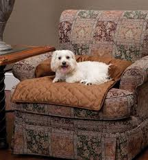 Big Lots Pet Furniture Covers by Best 25 Pet Couch Cover Ideas On Pinterest Dog Couch Cover Pet