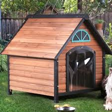 Rascal Contemporary Dog House