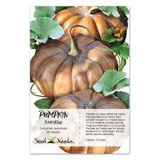 Where Did Carving Pumpkins Originated by Fairytale Pumpkin Seeds Cucurbita Moschata U2013 Seed Needs