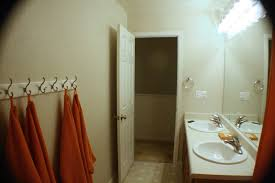 Blue And Brown Bathroom Decor by Bathroom Good Looking Picture Of Vintage Beige Bathroom