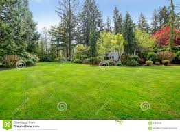 Beautiful Farm House Backyard Stock Photography - Image: 37917232 Playful Dog Running Away From Ball White Labradoodle Putting Greens Golf Just Like Grass Tour Backyard Green Cost Synlawn Itallations Reviews Testimonials Our Diy Kids Theater Emily A Clark Unique Architecturenice Little Bit Funky How To Make A Backyard Putting Green Wood Fence On Colorful House Stock Vector 606411272 Concrete Ideas Hgtvs Decorating Design Blog Hgtv Puttinggreenscom One Story Siding With Lawn View From The