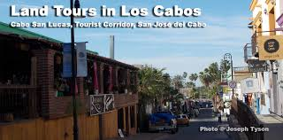 Cabosanlucastours Net Coupon, Joann 50 Off Online Coupon Amazon Promo Code Free Intertional Shipping Online Coupons Milanoo Coupon Promo Code Discount Codes Couponbre September 2018 Deals Sportsmans Guide Discount Coupon Dannon Printable Coupons Hollister Codes 2019 June Gear Phoenix Body Shops Near Me Mansion Select Red Envelope Radio 1 Dollar Off Gatorade Marine World Tickets Best Site For Sandy Balls Swiss Chalet Ronto Okosh Canada Zoomalia Ihop Ohio