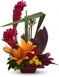 Order Telefloras Tropical Bliss From Edelweiss Flower Boutique Your Local Santa MonicaSanta Monica Florist Flowers Los Angeles Floristflower Shop
