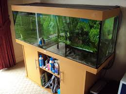5ft juwel aquarium 400 375 set up bargain price at