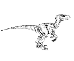 Jurassic Park Coloring Pages Velociraptor