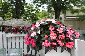Country Curtains Stockbridge Ma Hours by The Red Lion Inn Flower Tradition The Red Lion Inn